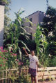 Corn grown 38 1/2 feet tall and did not yield any corn