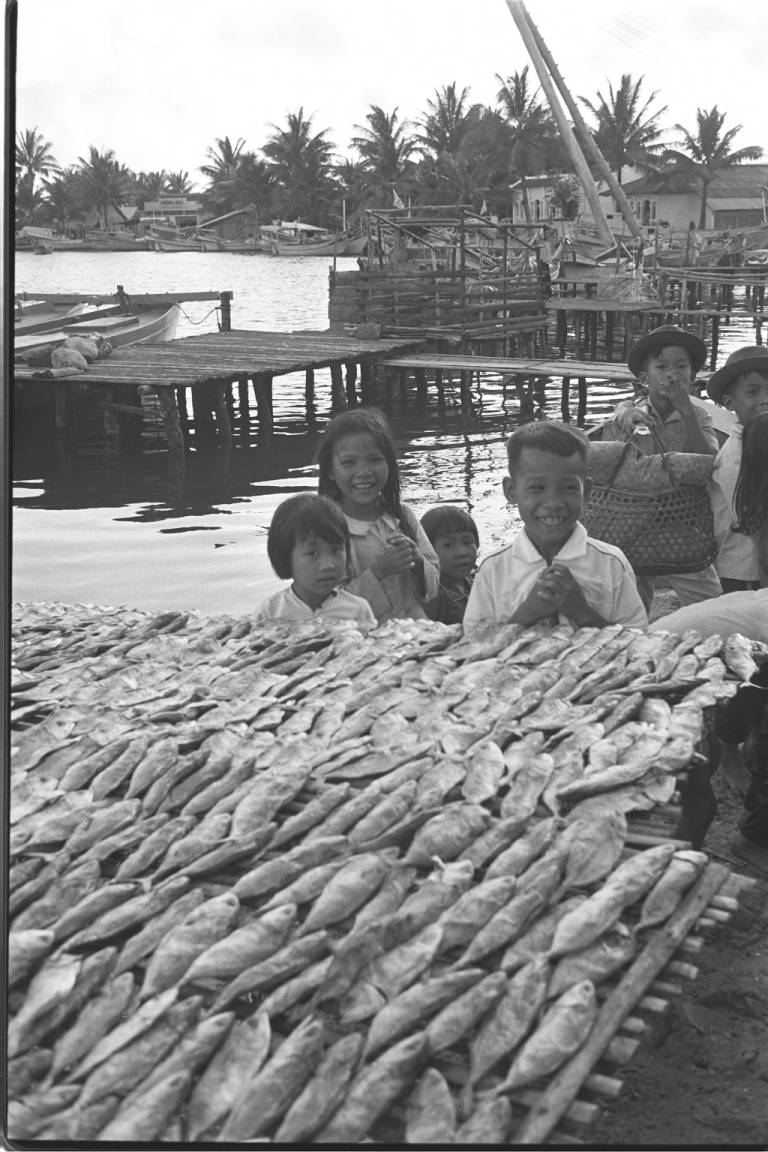Fish drying by the fishing port in the sun.